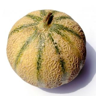 Cantalupe Melone